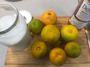 Mermelada-taronja-amarga (2)